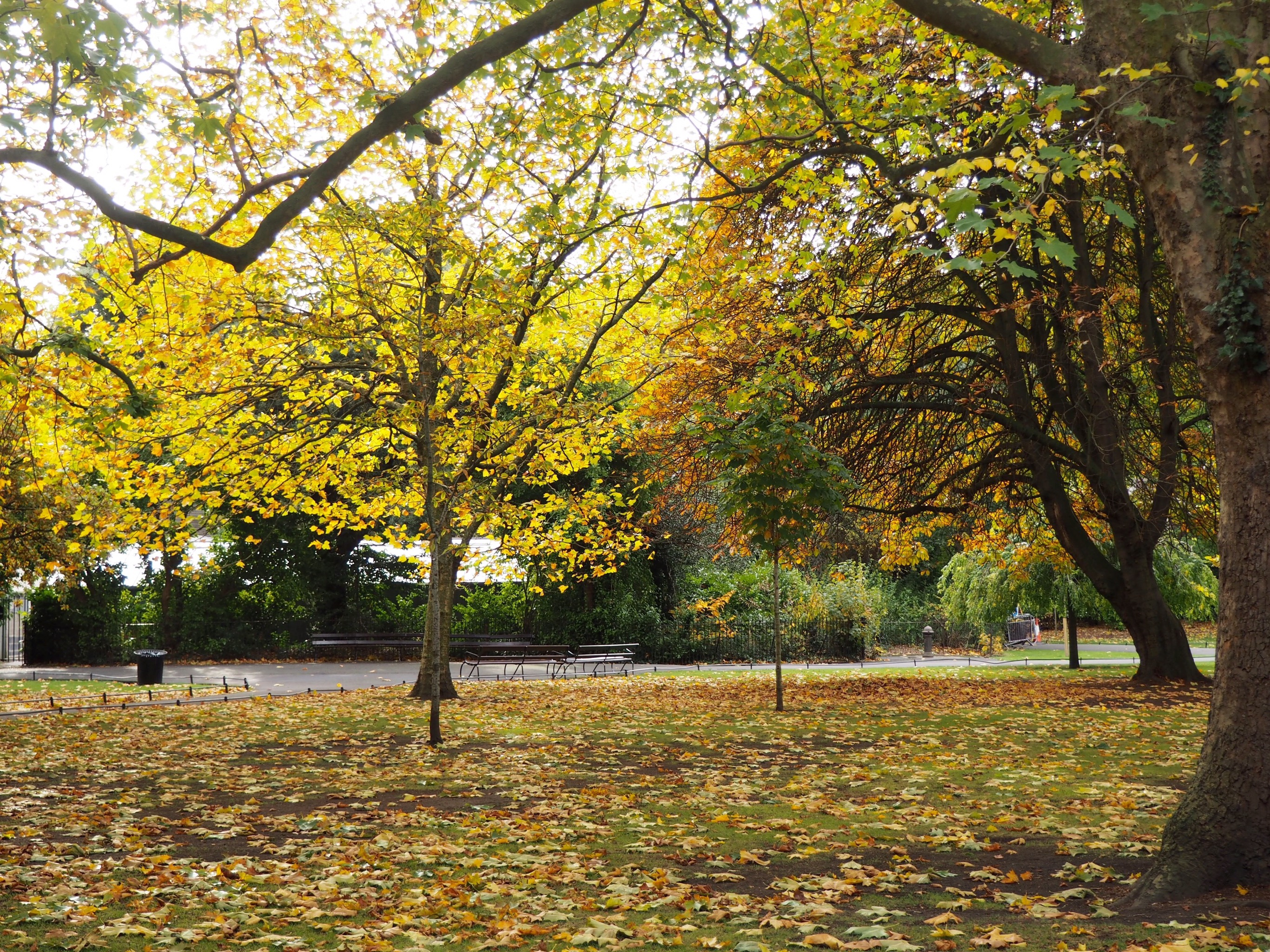 My 10 favourite things about Autumn